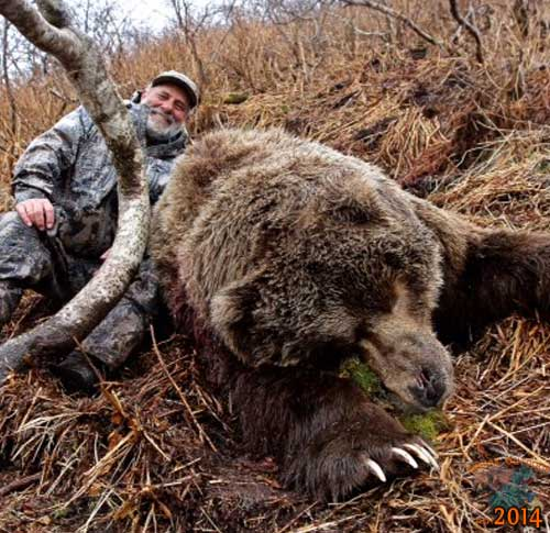 Kodiak Brown Bear Hunts - KodiakOutdoors com